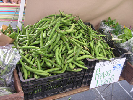 A giant crate of fava beans