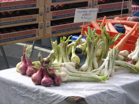 Spring onions (red and white) and garlic, with their green tops